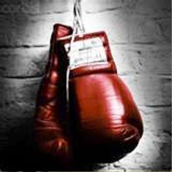 Boxing and Martial Art Equipment