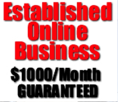 Suite of 3 Online Advertising Services - Internet Marketing Related W / Guaranteed