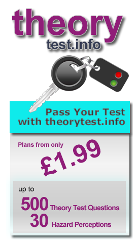 Online Theory Test Training Business Website (Established)