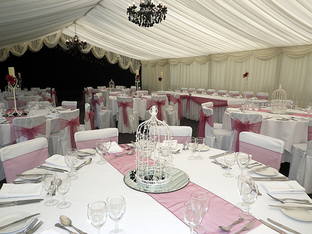 Exceptional Venue Decoration / Chair Cover Hire Business