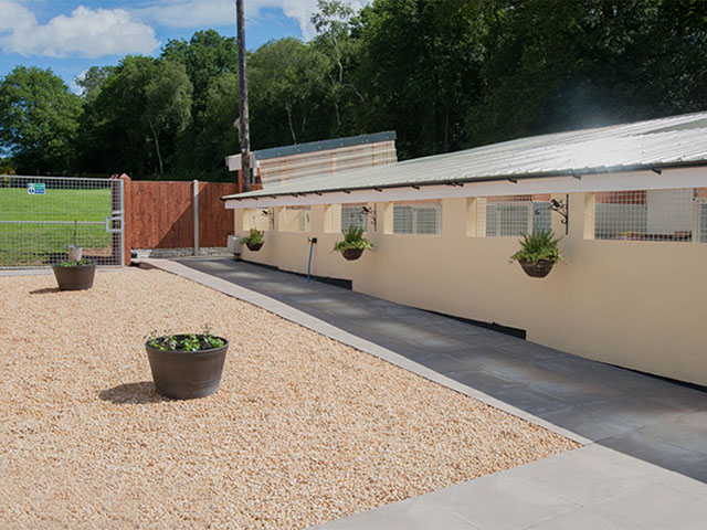 Beautiful Boarding Kennels with 95 Acres of Land & Greyhound Racing Kennels