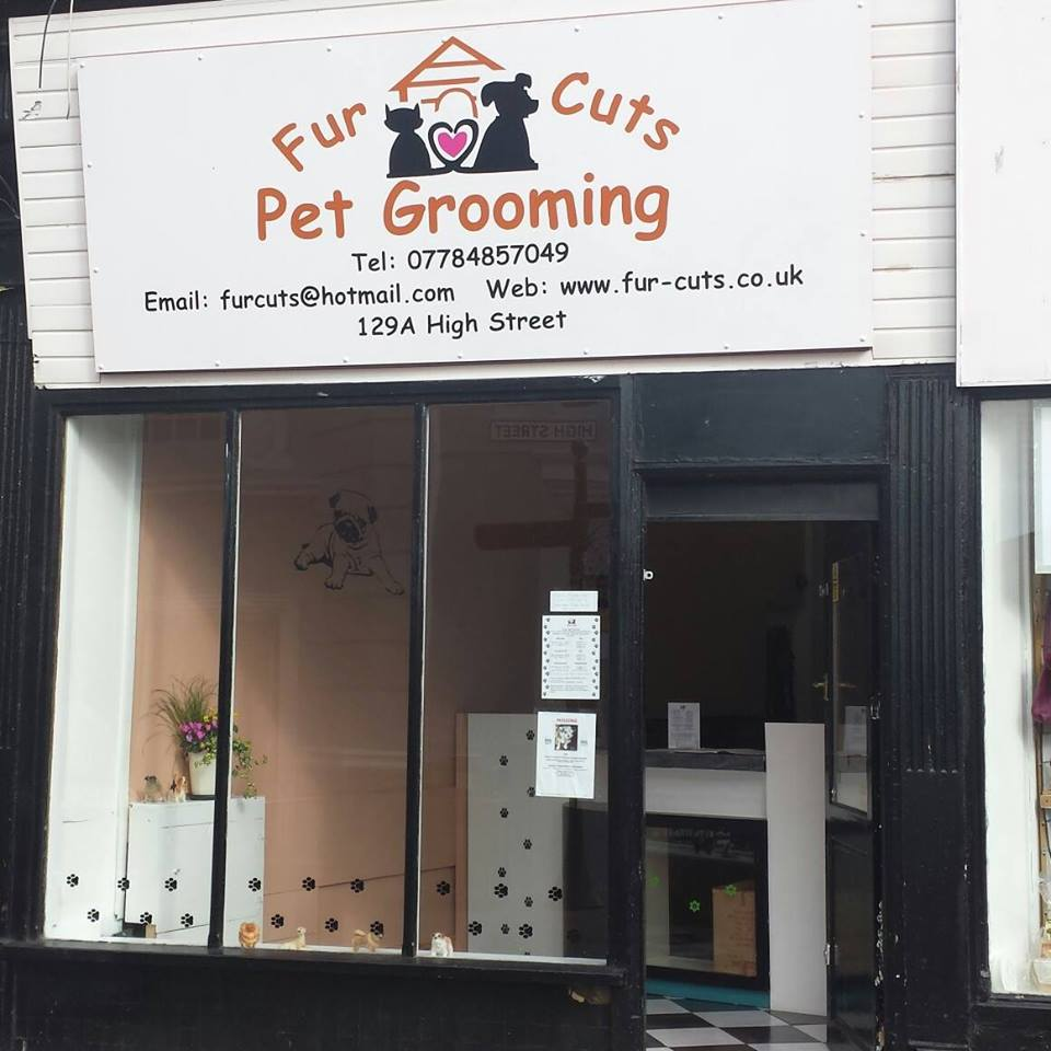 Dog Grooming Parlor
